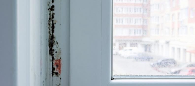 Moisissure sur une fenêtre en PVC: causes et solutions